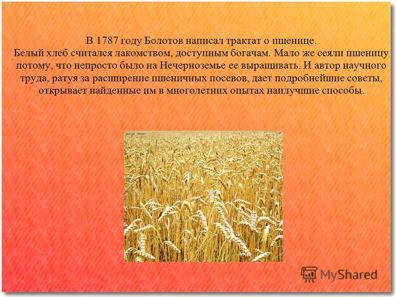 В 1787 году Болотов написал трактат о пшенице. Белый хлеб считался лакомством, доступным богачам. Мало же сеяли пшеницу потому, что непросто было на Нечерноземье ее выращивать. И автор научного труда, ратуя за расширение пшеничных посевов, дает подр