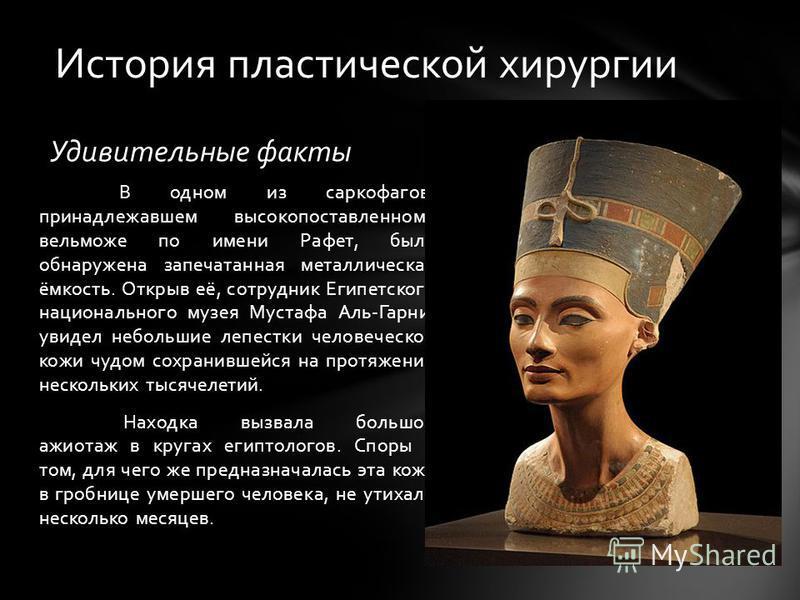 Удивительные факты В одном из саркофагов, принадлежавшем высокопоставленному вельможе по имени Рафет, была обнаружена запечатанная металлическая ёмкость. Открыв её, сотрудник Египетского национального музея Мустафа Аль-Гарни, увидел небольшие лепестк