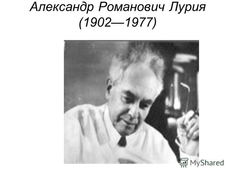 Александр Романович Лурия (19021977)