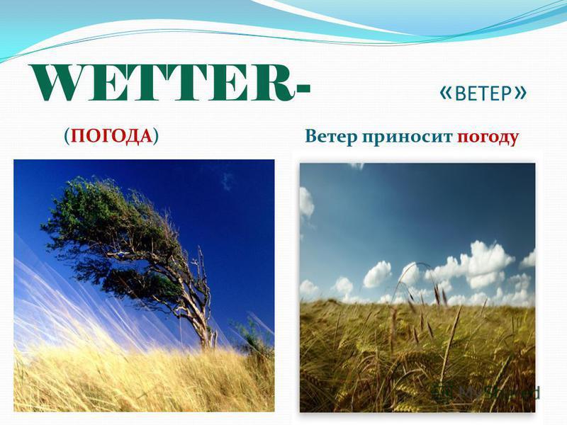 WETTER- « ВЕТЕР » (ПОГОДА) Ветер приносит погоду