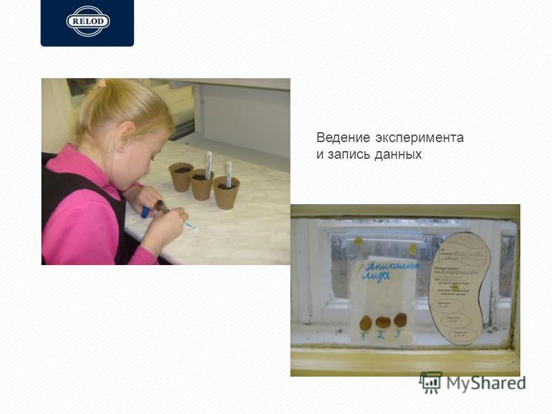 Ведение эксперимента и запись данных