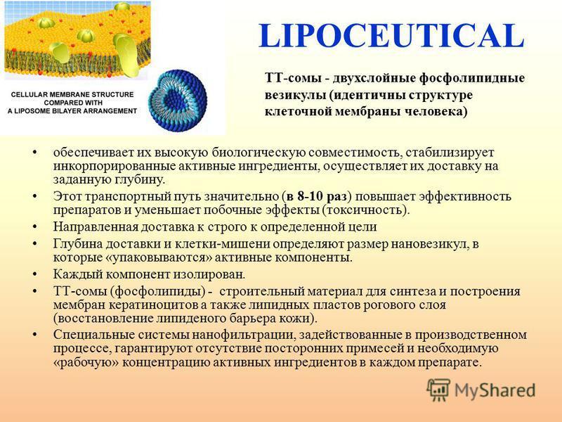 LIPOCEUTICAL обеспечивает их высокую биологическую совместимость, стабилизирует инкорпорированные активные ингредиенты, осуществляет их доставку на заданную глубину. Этот транспортный путь значительно (в 8-10 раз) повышает эффективность препаратов и