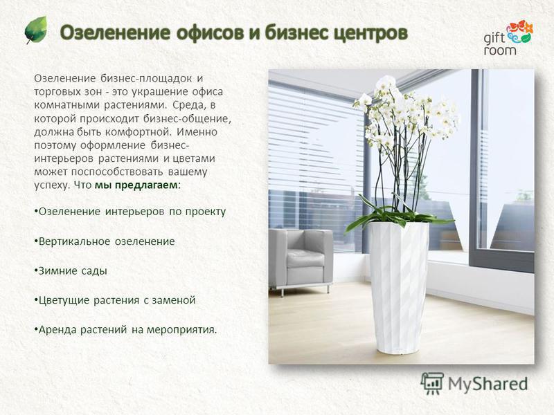 Озеленение бизнес-площадок и торговых зон - это украшение офиса комнатными растениями. Среда, в которой происходит бизнес-общение, должна быть комфортной. Именно поэтому оформление бизнес- интерьеров растениями и цветами может поспособствовать вашему