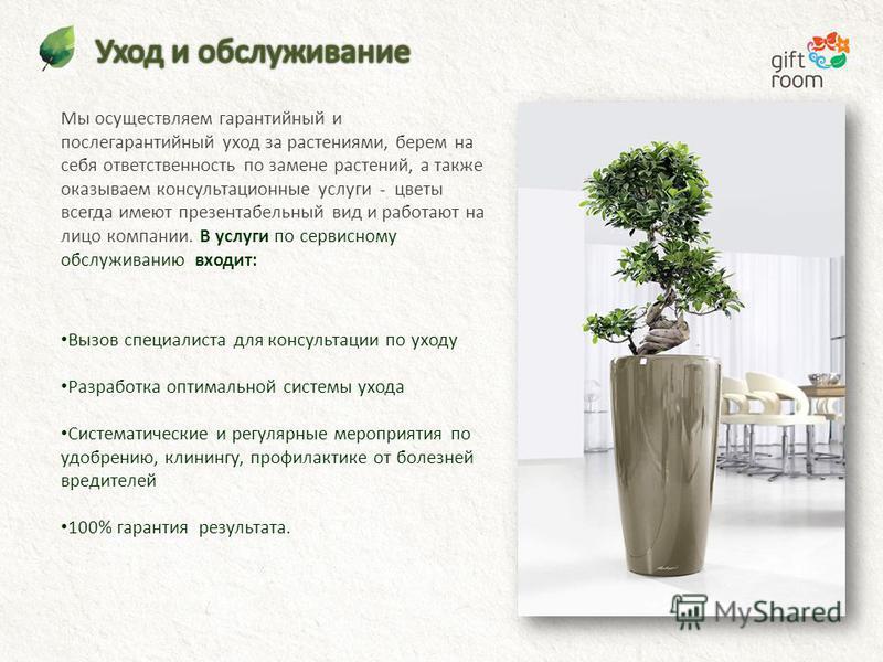 Мы осуществляем гарантийный и послегарантийный уход за растениями, берем на себя ответственность по замене растений, а также оказываем консультационные услуги - цветы всегда имеют презентабельный вид и работают на лицо компании. В услуги по сервисном