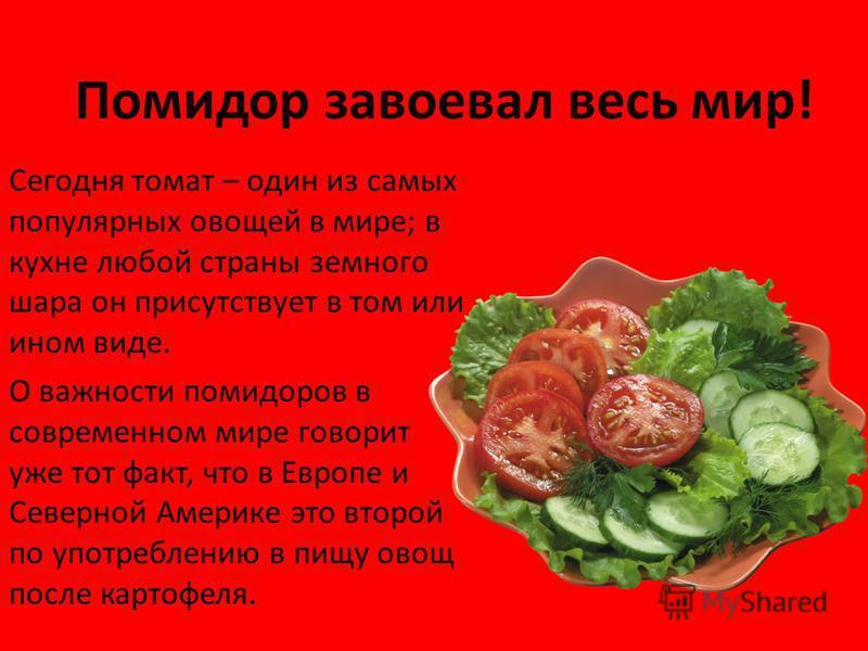 Помидор завоевал весь мир! Сегодня томат – один из самых популярных овощей в мире; в кухне любой страны земного шара он присутствует в том или ином виде. О важности помидоров в современном мире говорит уже тот факт, что в Европе и Северной Америке эт