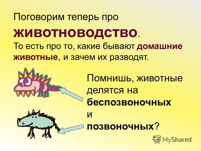Поговорим теперь про животноводство. То есть про то, какие бывают домашние животные, и зачем их разводят. Помнишь, животные делятся на беспозвоночных и позвоночных?