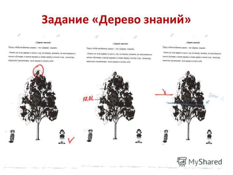 Задание «Дерево знаний»
