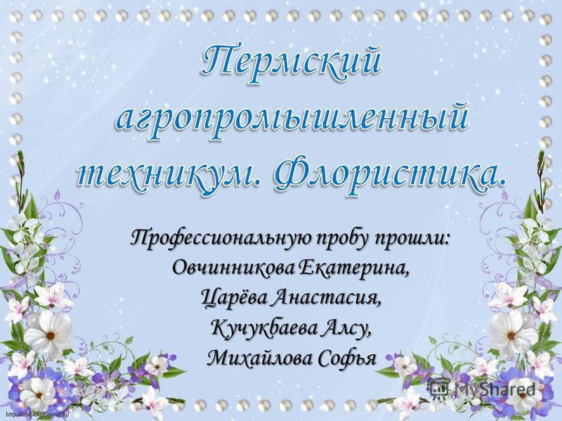 Профессиональную пробу прошли: Овчинникова Екатерина, Царёва Анастасия, Кучукбаева Алсу, Михайлова Софья