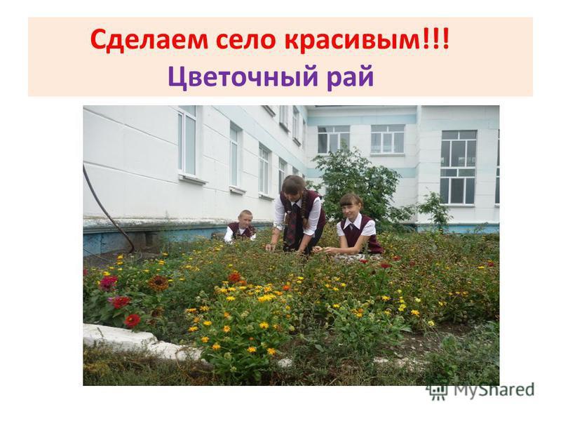 Сделаем село красивым!!! Цветочный рай