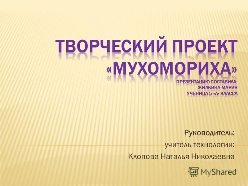 Руководитель: учитель технологии: Клопова Наталья Николаевна
