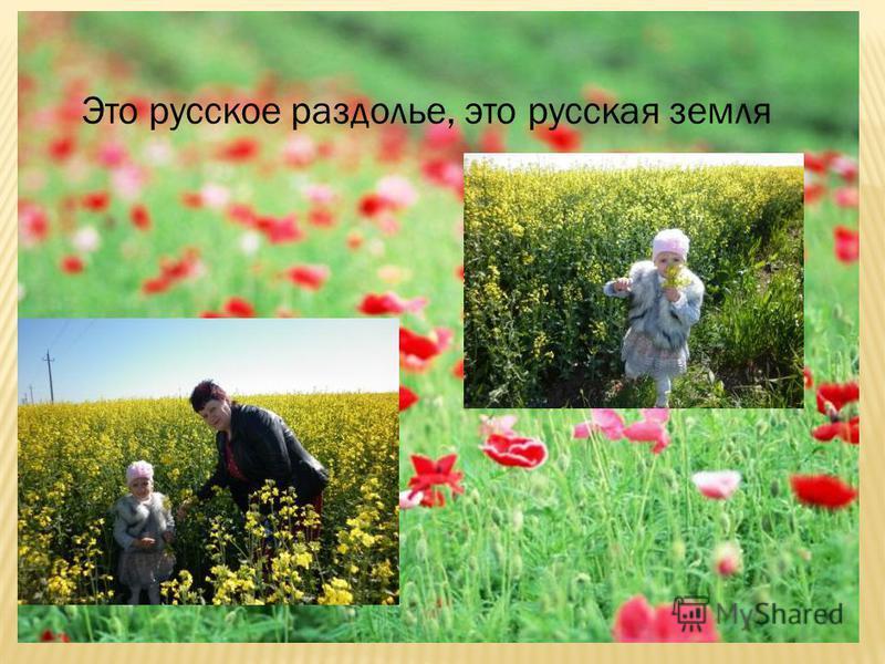 Это русское раздолье, это русская земля