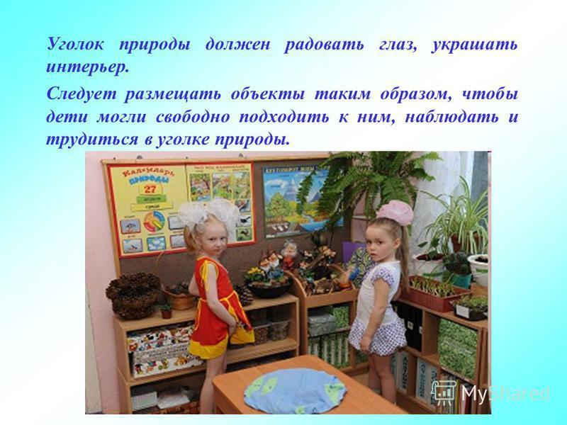 Уголок природы должен радовать глаз, украшать интерьер. Следует размещать объекты таким образом, чтобы дети могли свободно подходить к ним, наблюдать и трудиться в уголке природы.