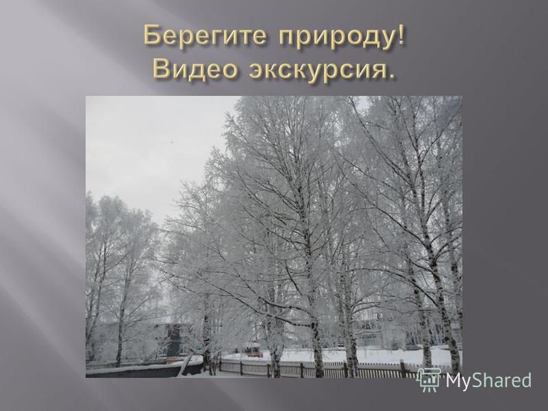 За двумя зайцами погонишься, Чем дальше в лес, Волков бояться в лес не ходить. ни одного не поймаешь. тем больше дров.
