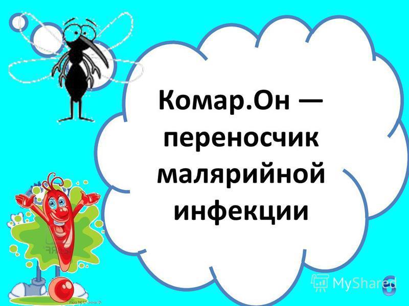 От укусов какого представителя фауны ежегодно гибнет самое большое число людей? Комар.Он переносчик малярийной инфекции