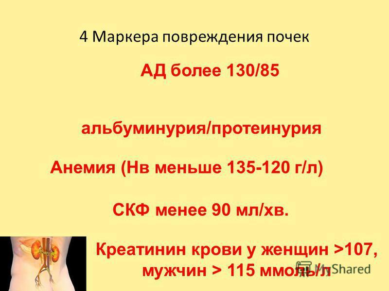 4 Маркера повреждения почек АД более 130/85 альбуминурия/протеинурия Анемия (Нв меньше 135-120 г/л) СКФ менее 90 мл/хв. Креатинин крови у женщин >107, мужчин > 115 ммоль/л