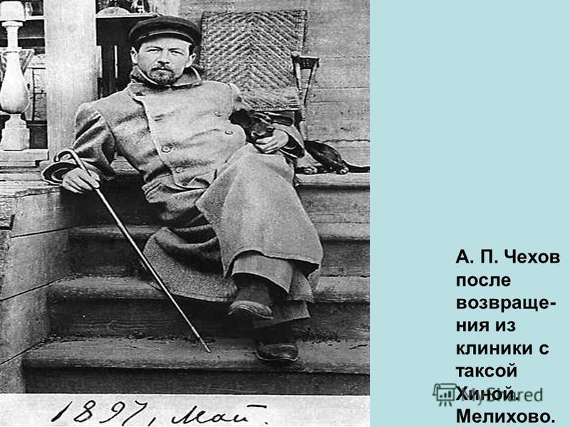 А. П. Чехов после возвращения из клиники с таксой Хиной. Мелихово.