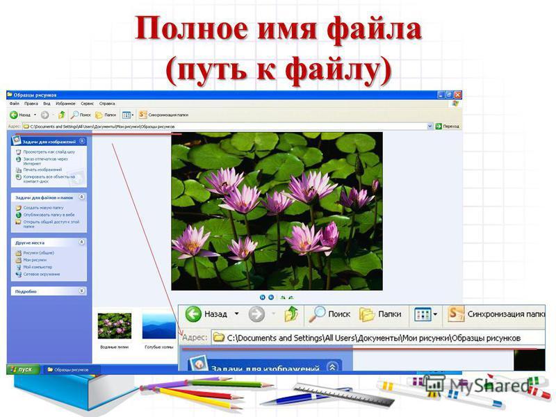 Полное имя файла (путь к файлу)