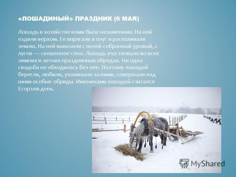 «ЛОШАДИНЫЙ» ПРАЗДНИК (6 МАЯ) Лошадь в хозяйстве коми была незаменима. На ней ездили верхом. Ее впрягали в плуг и распахивали землю. На ней вывозили с полей собранный урожай, с лугов скошенное сено. Лошадь участвовала во всех зимних и летних праздничн