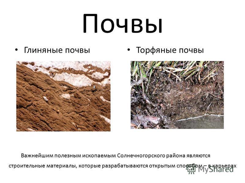Почвы Глиняные почвы Торфяные почвы Важнейшим полезным ископаемым Солнечногорского района являются строительные материалы, которые разрабатываются открытым способом – в карьерах