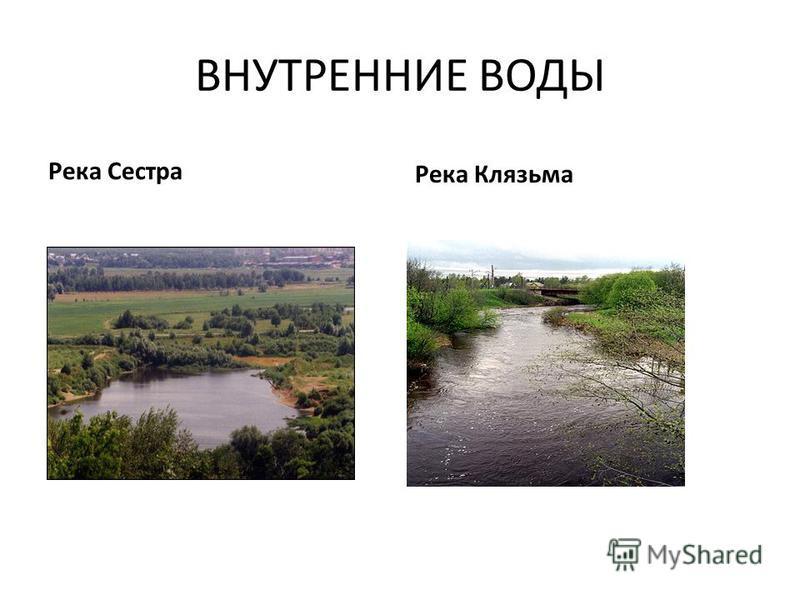 ВНУТРЕННИЕ ВОДЫ Река Сестра Река Клязьма