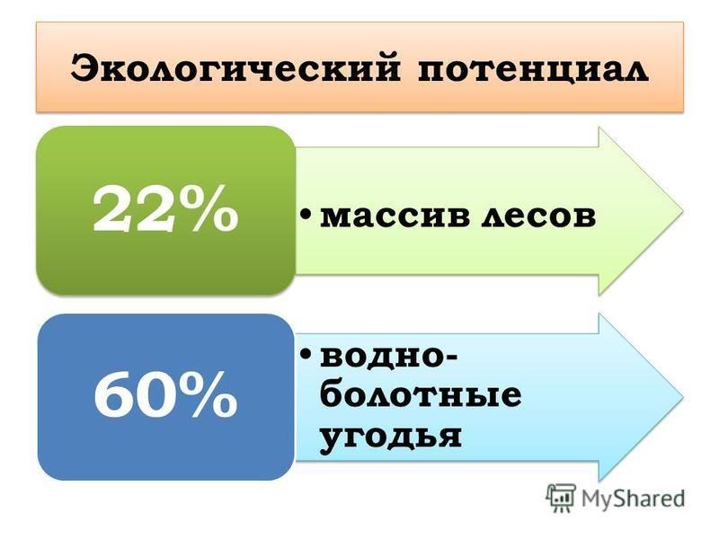 Экологический потенциал массив лесов 22% водно- болотные угодья 60%