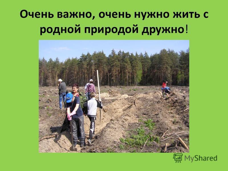 Очень важно, очень нужно жить с родной природой дружно!