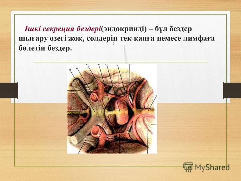 Ішкі секреция бездері(эндокринді) – бұл бездер шығару өзегі жеқ, сөлдерін тек қанға немсе лимфаға бөлетін бездер.