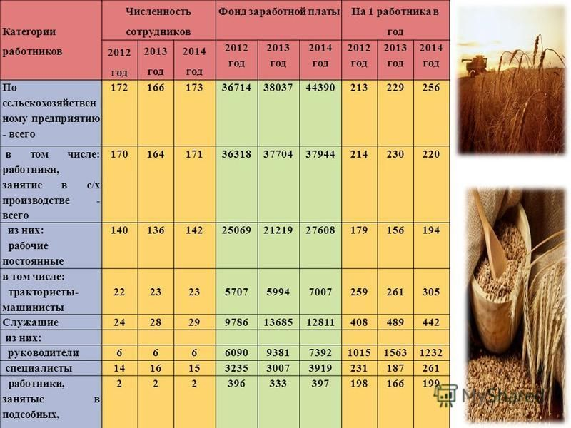 Категории работников Численность сотрудников Фонд заработной платы На 1 работника в год 2012 год 2013 год 2014 год 2012 год 2013 год 2014 год 2012 год 2013 год 2014 год По сельскохозяйственному предприятию - всего 172166173367143803744390213229256 в