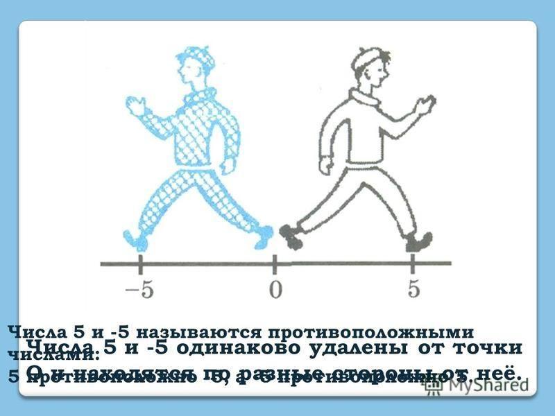 Числа 5 и -5 одинаково удалены от точки О и находятся по разные стороны от неё. Числа 5 и -5 называются противоположными числами: 5 противоположно -5, а -5 противоположно 5.