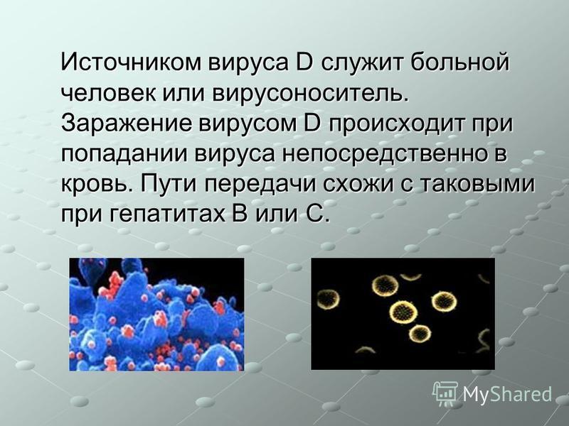 Источником вируса D служит больной человек или вирусоноситель. Заражение вирусом D происходит при попадании вируса непосредственно в кровь. Пути передачи схожи с таковыми при гепатитах В или С. Источником вируса D служит больной человек или вирусонос