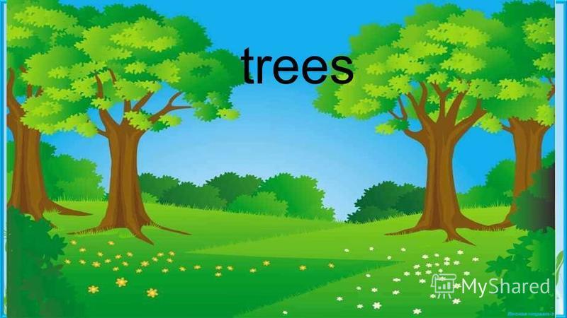 trees Пасечник Е.А. trees