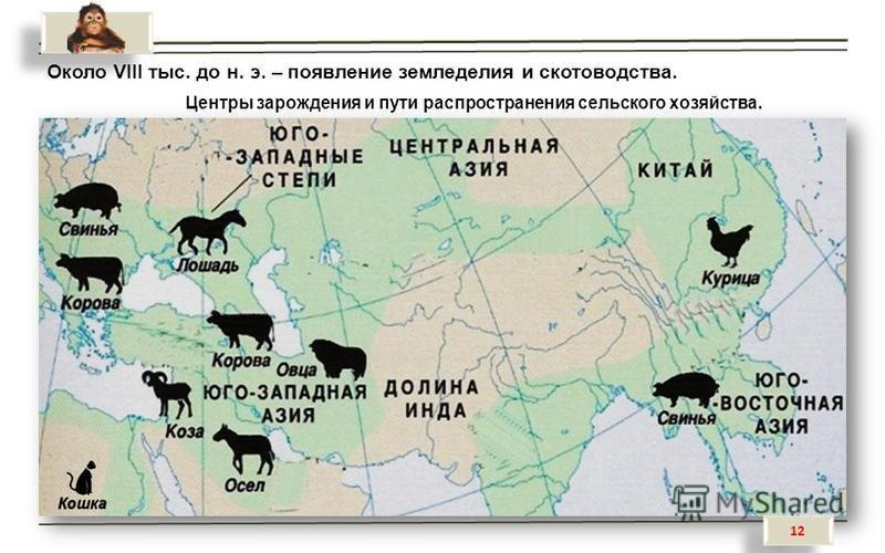 Около VIII тыс. до н. э. – появление земледелия и скотоводства. Центры зарождения и пути распространения сельского хозяйства. 12