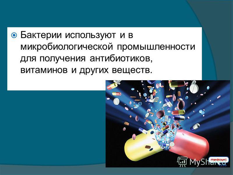 Бактерии используют и в микробиологической промышленности для получения антибиотиков, витаминов и других веществ.