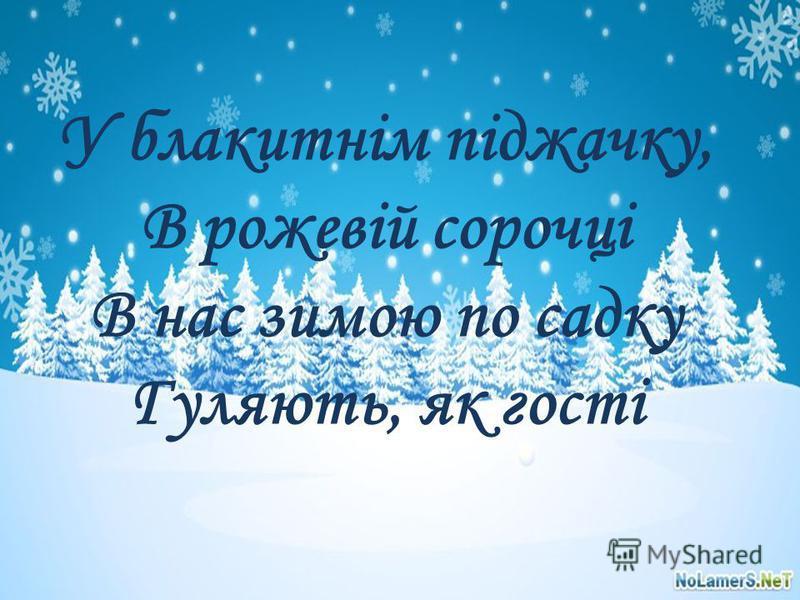 У блакитнім піджачку, В рожевій сорочці В нас зимою по садку Гуляють, як гості