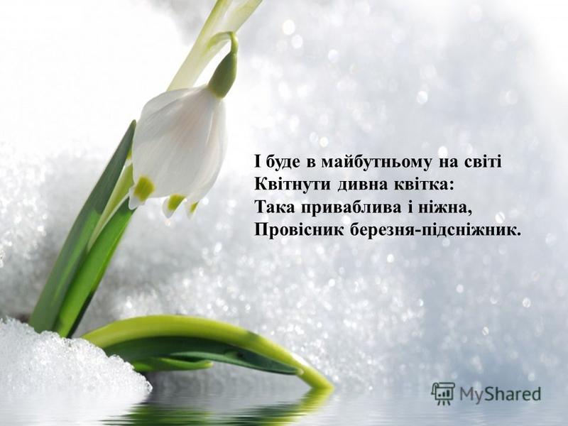 І буде в майбутньому на світі Квітнути дивна квітка: Така приваблива і ніжна, Провісник березня-підсніжник.