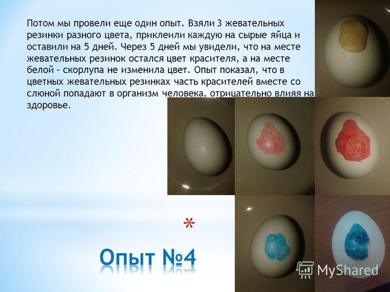 Потом мы провели еще один опыт. Взяли 3 жевательных резинки разного цвета, приклеили каждую на сырые яйца и оставили на 5 дней. Через 5 дней мы увидели, что на месте жевательных резинок остался цвет красителя, а на месте белой – скорлупа не изменила