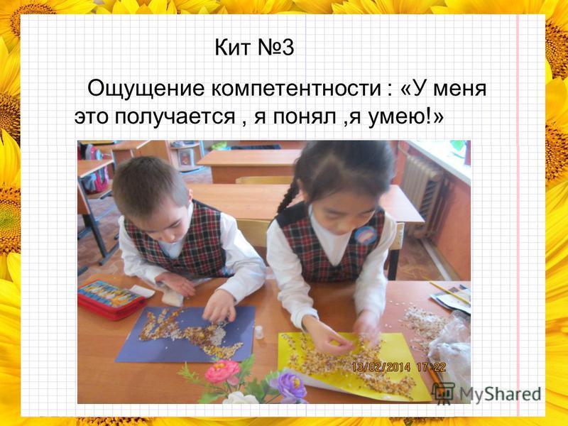Кит 3 Ощущение компетентности : «У меня это получается, я понял,я умею!»