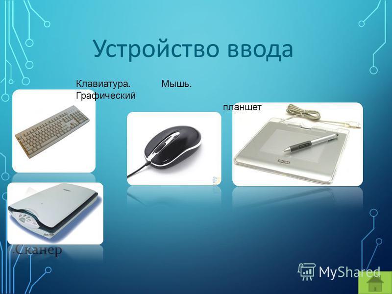 Устройство ввода Сканер Клавиатура. Мышь. Графический планшет