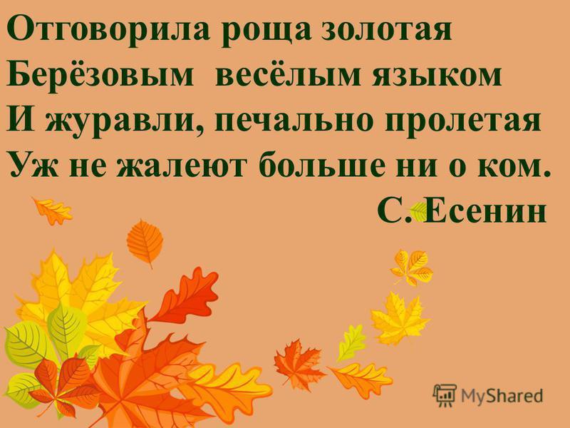 Отговорила роща золотая Берёзовым весёлым языком И журавли, печально пролетая Уж не жалеют больше ни о ком. С. Есенин