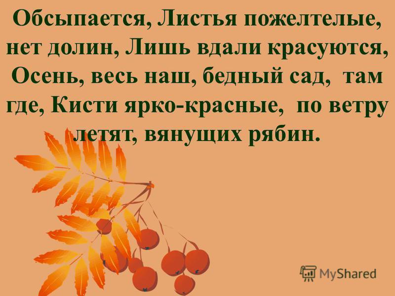 Обсыпается, Листья пожелтелые, нет долин, Лишь вдали красуются, Осень, весь наш, бедный сад, там где, Кисти ярко-красные, по ветру летят, вянущих рябин.