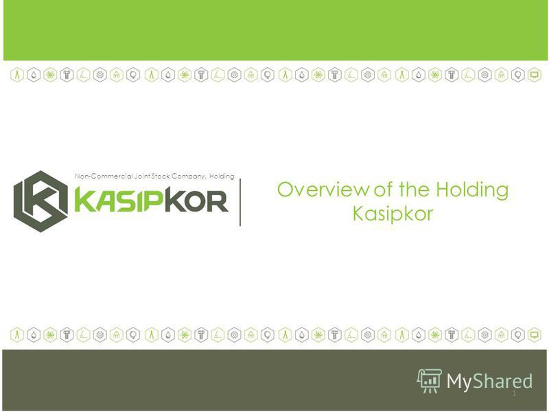 Overview of the Holding Kasipkor Non-Commercial Joint Stock Company. Holding 1