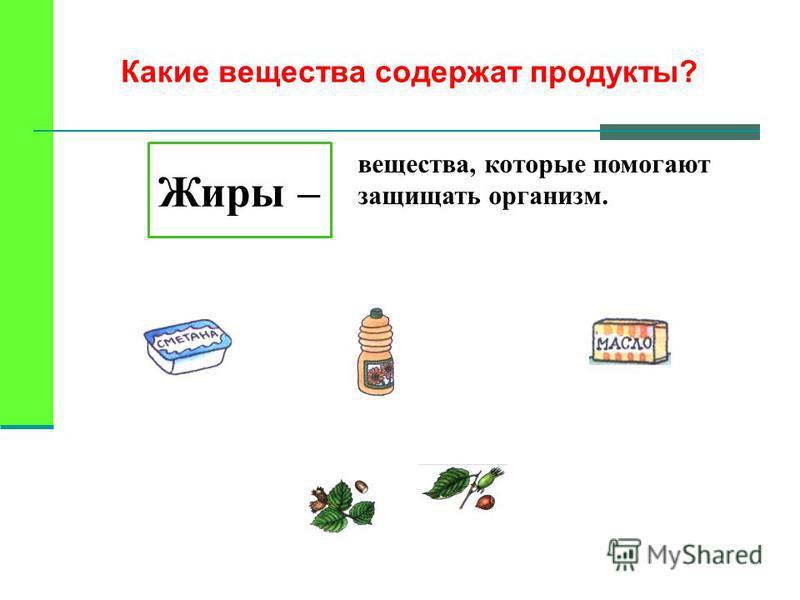 Какие вещества содержат продукты? Жиры – вещества, которые помогают защищать организм.