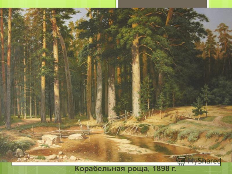 Корабельная роща, 1898 г.