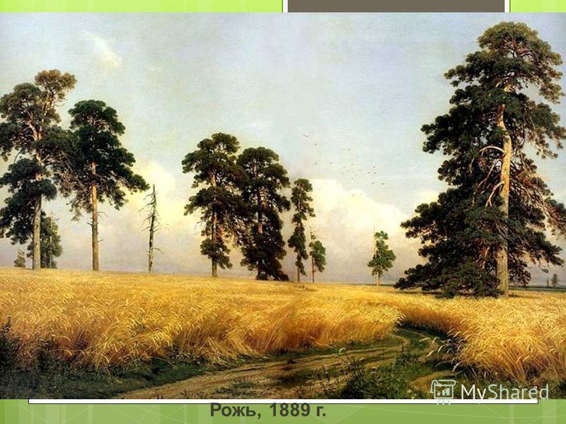 Рожь, 1889 г.