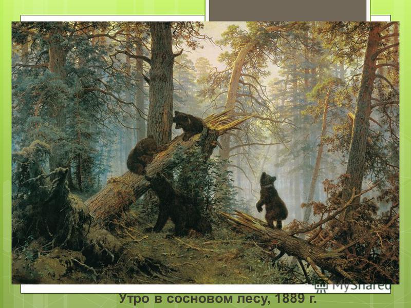 Утро в сосновом лесу, 1889 г.