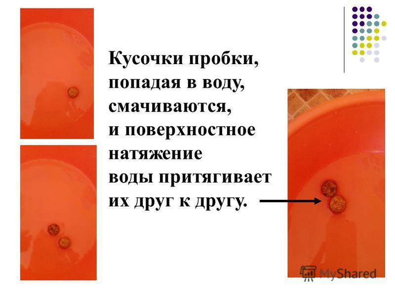 Кусочки пробки, попадая в воду, смачиваются, и поверхностное натяжение воды притягивает их друг к другу.