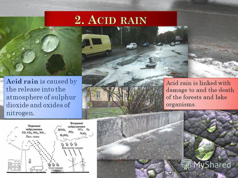 Acid rain is caused by the release into the atmosphere of sulphur dioxide and oxides of nitrogen. Acid rain is linked with damage to and the death of the forests and lake organisms.