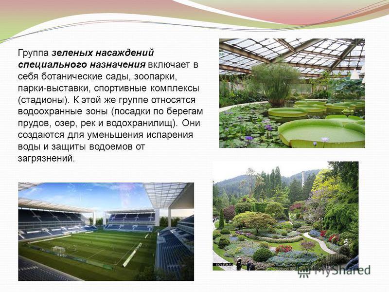 Группа зеленых насаждений специального назначения включает в себя ботанические сады, зоопарки, парки-выставки, спортивные комплексы (стадионы). К этой же группе относятся водоохранные зоны (посадки по берегам прудов, озер, рек и водохранилищ). Они со