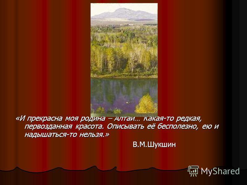 «И прекрасна моя родина – Алтай… Какая-то редкая, первозданная красота. Описывать её бесполезно, ею и надышаться-то нельзя.» В.М.Шукшин В.М.Шукшин
