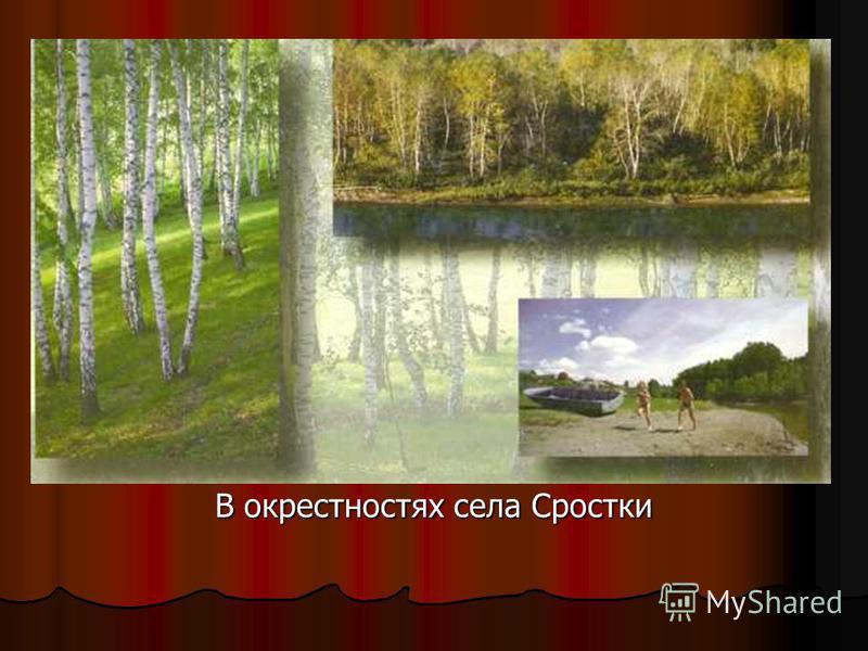 В окрестностях села Сростки